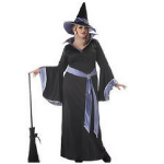 California Costumes Women's Plus Size – Incantasia – Glamour Witch Costume Review!