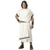 California Costumes Men's Deluxe Classic Toga Set Review!
