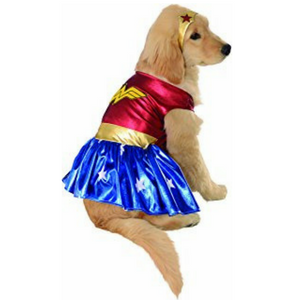 Rubies Costume DC Heroes and Villains Collection Pet Costume Review!
